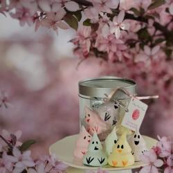 Easter Chicks Meringues Box - Délice Glacé