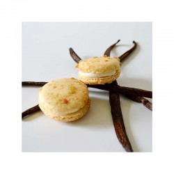 French Macarons - 2 Flavors - Blue Box 24 Count